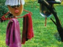Как полезные вещи в саду могут стать украшением
