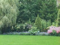 Как создать сад в английском стиле