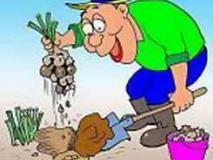 Как уберечь спину при работе на огороде