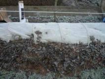 Подготовка винограда к зиме и его укрытие