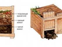 Правильный компост. Этапы изготовления