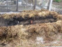 Устройство теплых грядок для получения ранних овощей