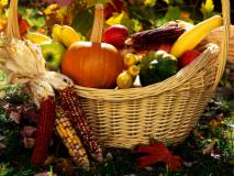 Осенние хлопоты на огороде
