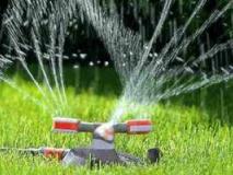 Уход за газоном: полив и подкормка