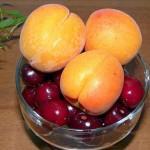 Что нужно знать об обрезке черешни и абрикоса