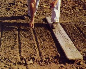 Как подготовить грядки и другие площади к посадке