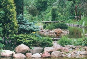 Как создать сад в китайском стиле