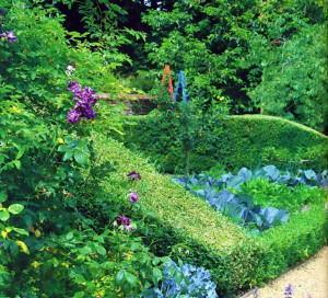 Как создать сады пряных трав