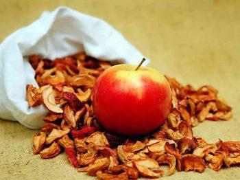 Как сушить яблоки на зиму и не испортить сухофрукты при хранении