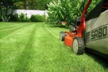 Уход за газоном: скашивание