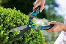 Инструменты для ухода за деревьями