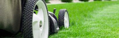 Время стричь: выбираем технику для газона